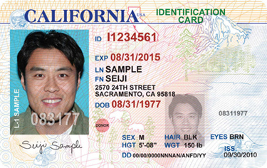Licenses Los Lappl - Angeles Beef California To League Police Up Changes Driver's Security Dramatic Protective
